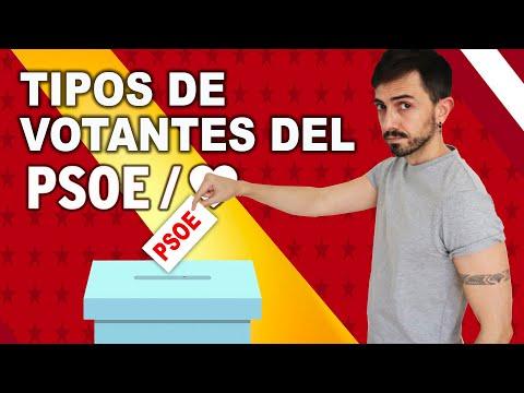 VÍDEO: Los 9 tipos de VOTANTES del PSOE | InfoVlogger de InfoVlogger