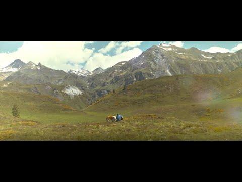 Video Jarabe de Palo - Misteriosamente Hoy (Videoclip Oficial)