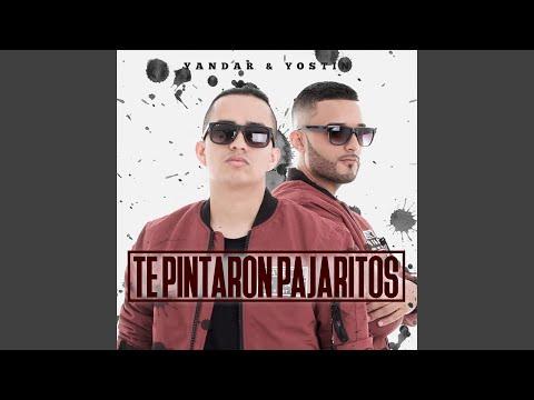 Te Pintaron Pajaritos (feat. Andy Rivera)
