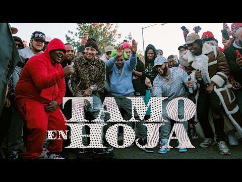 El Alfa «El Jefe» x Dowba Montana x MarkB – Tamo En Hoja (Video Oficial)